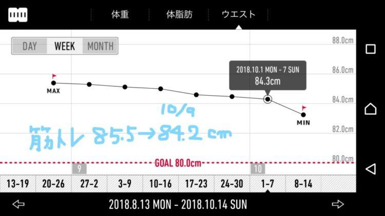 筋トレ ダイエットグラフ
